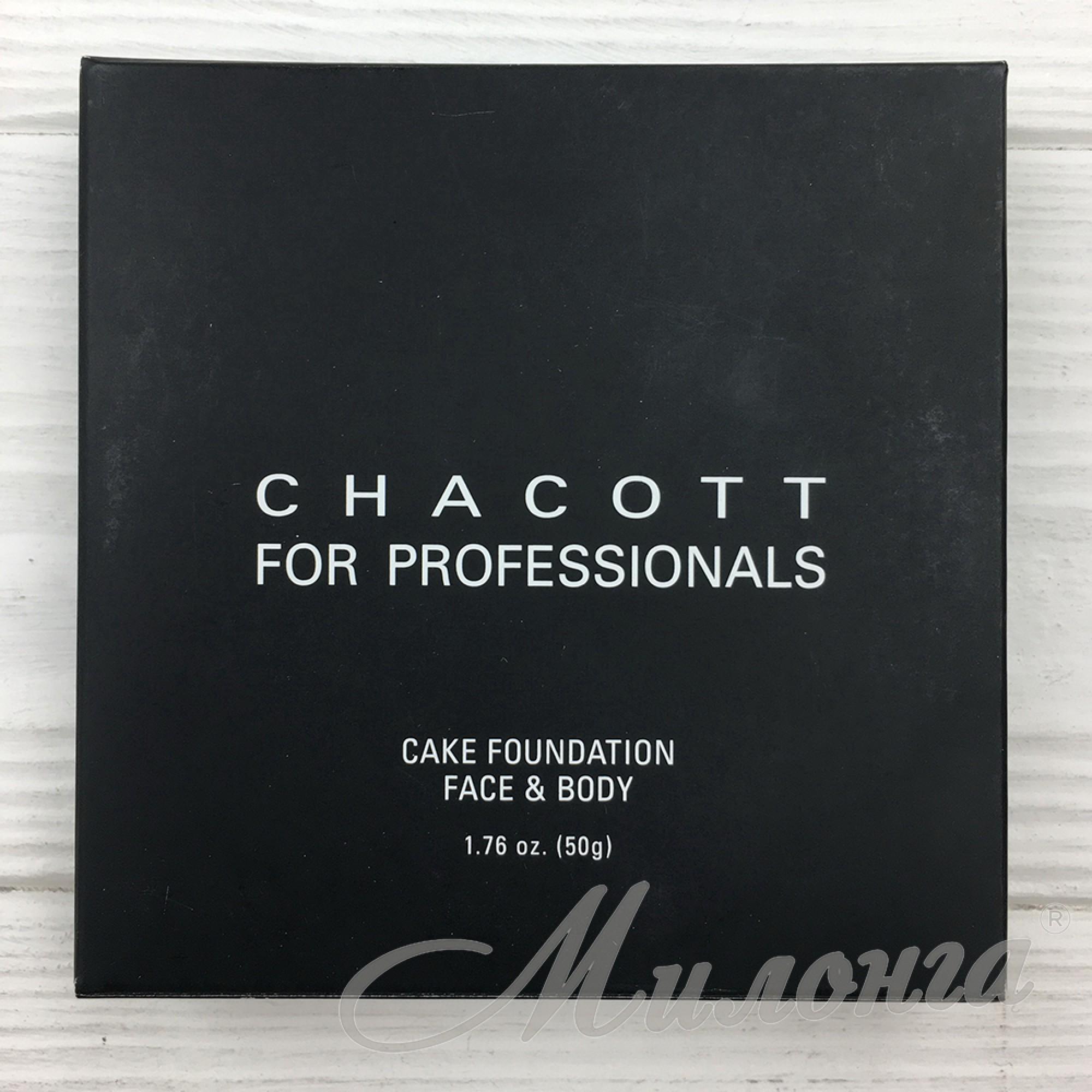 Сухой тональный крем-пудра для лица и тела Cake Foundation