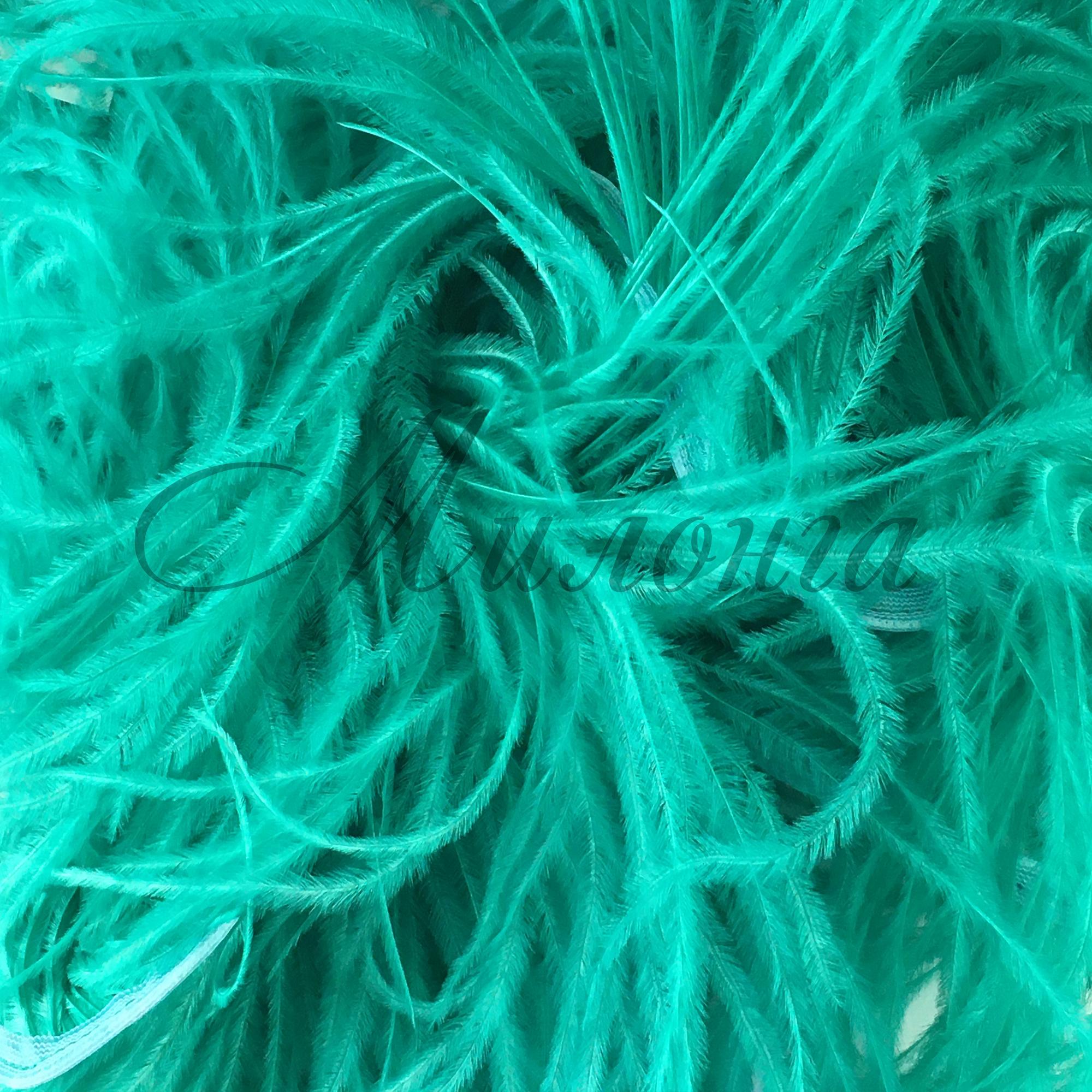 Перья страуса DSI Jade