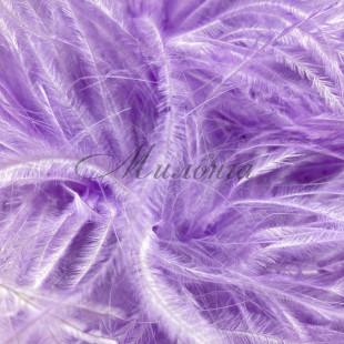 Boa DSI 5 Ply Lilac