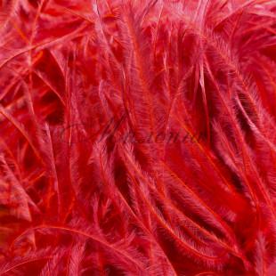 Boa DSI 5 Ply Scarlet