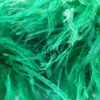 Boa Lux Emerald