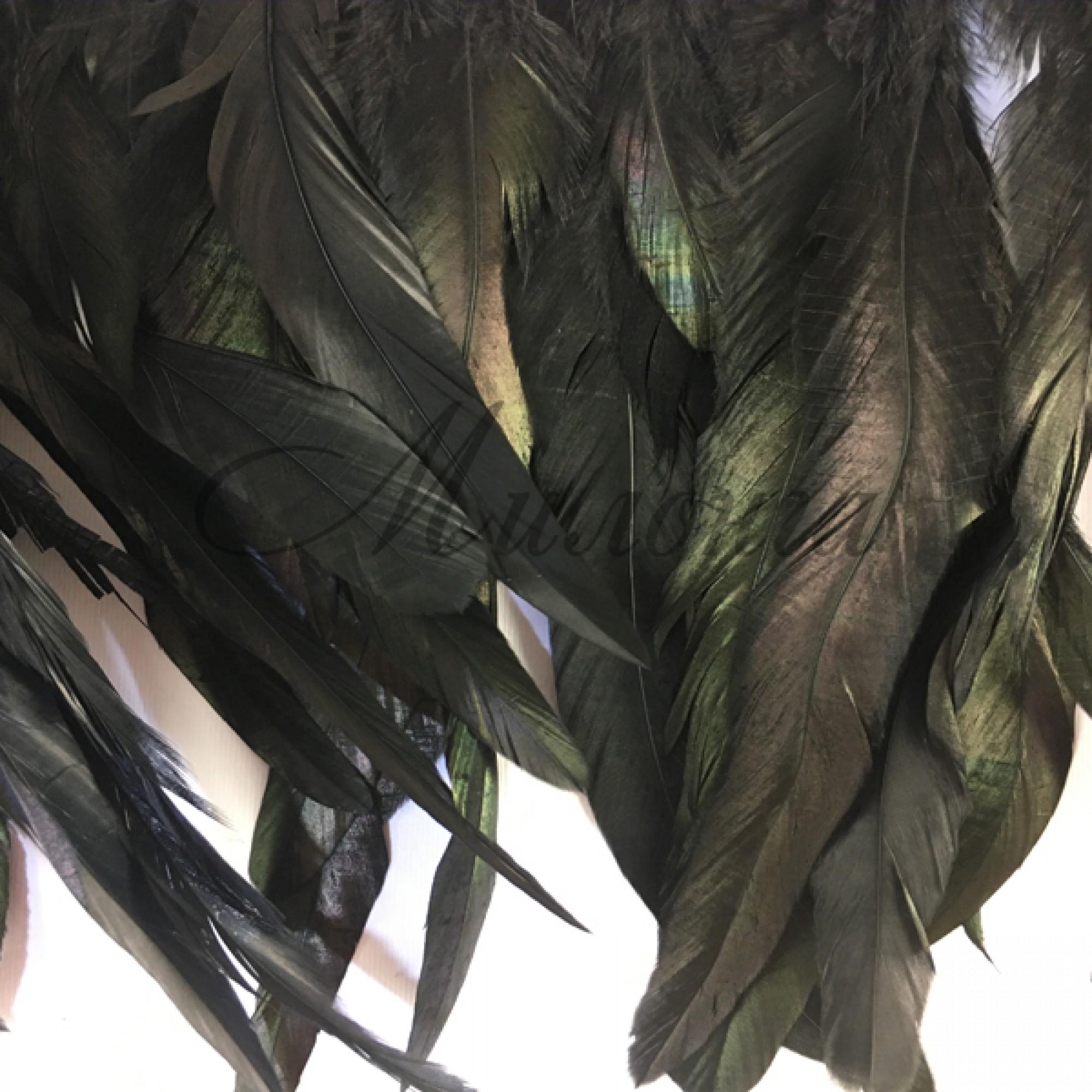 Перо  FEATHERS DSI 25/30 см Black