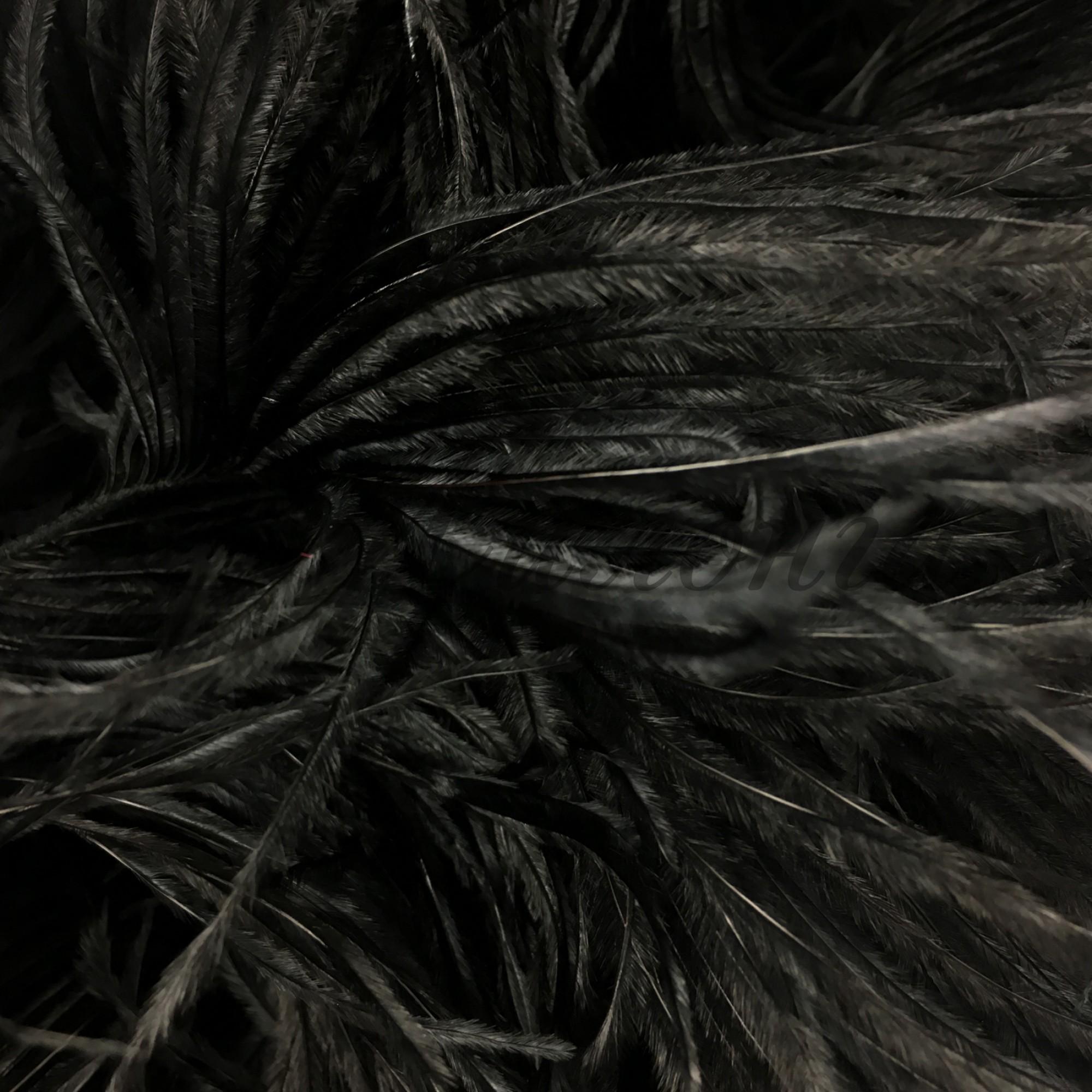 Перья страуса Chrisanne Black