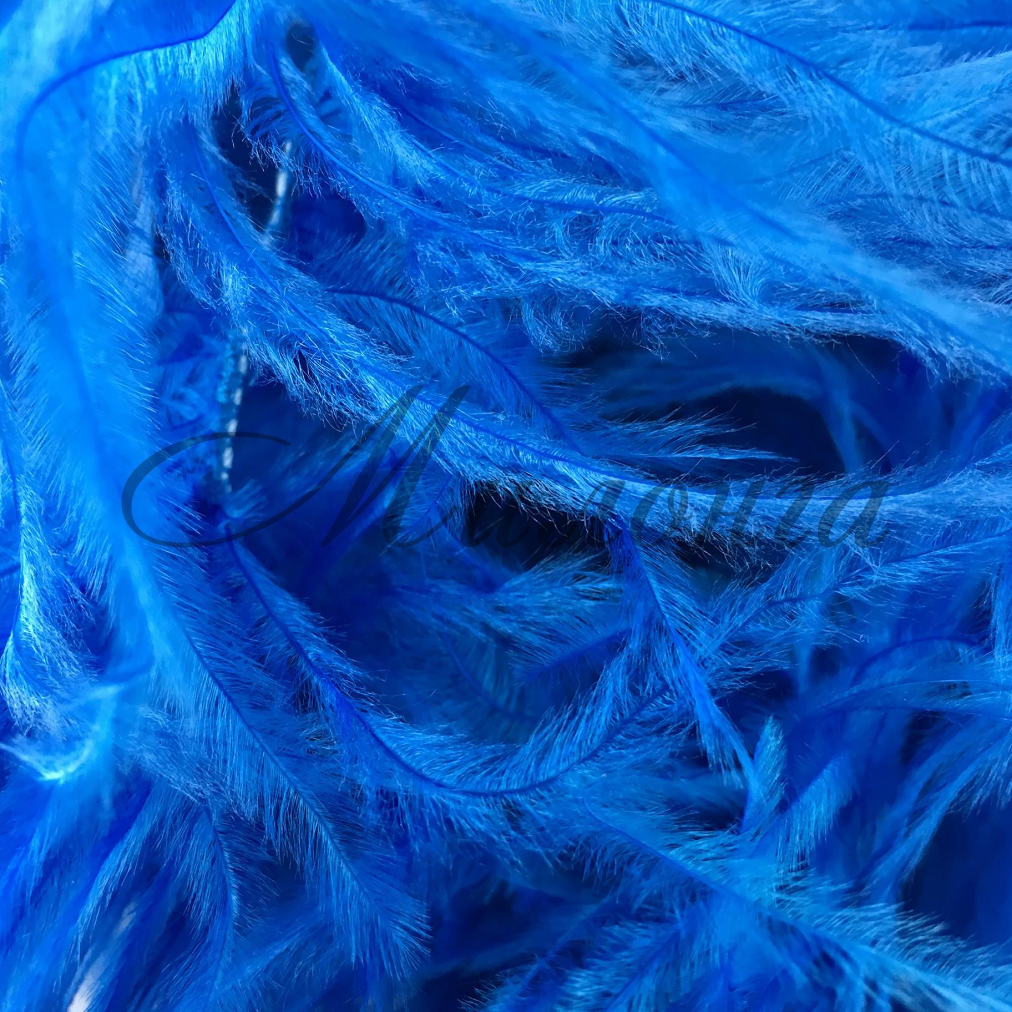 Перья страуса Chrisanne ElectricBlue