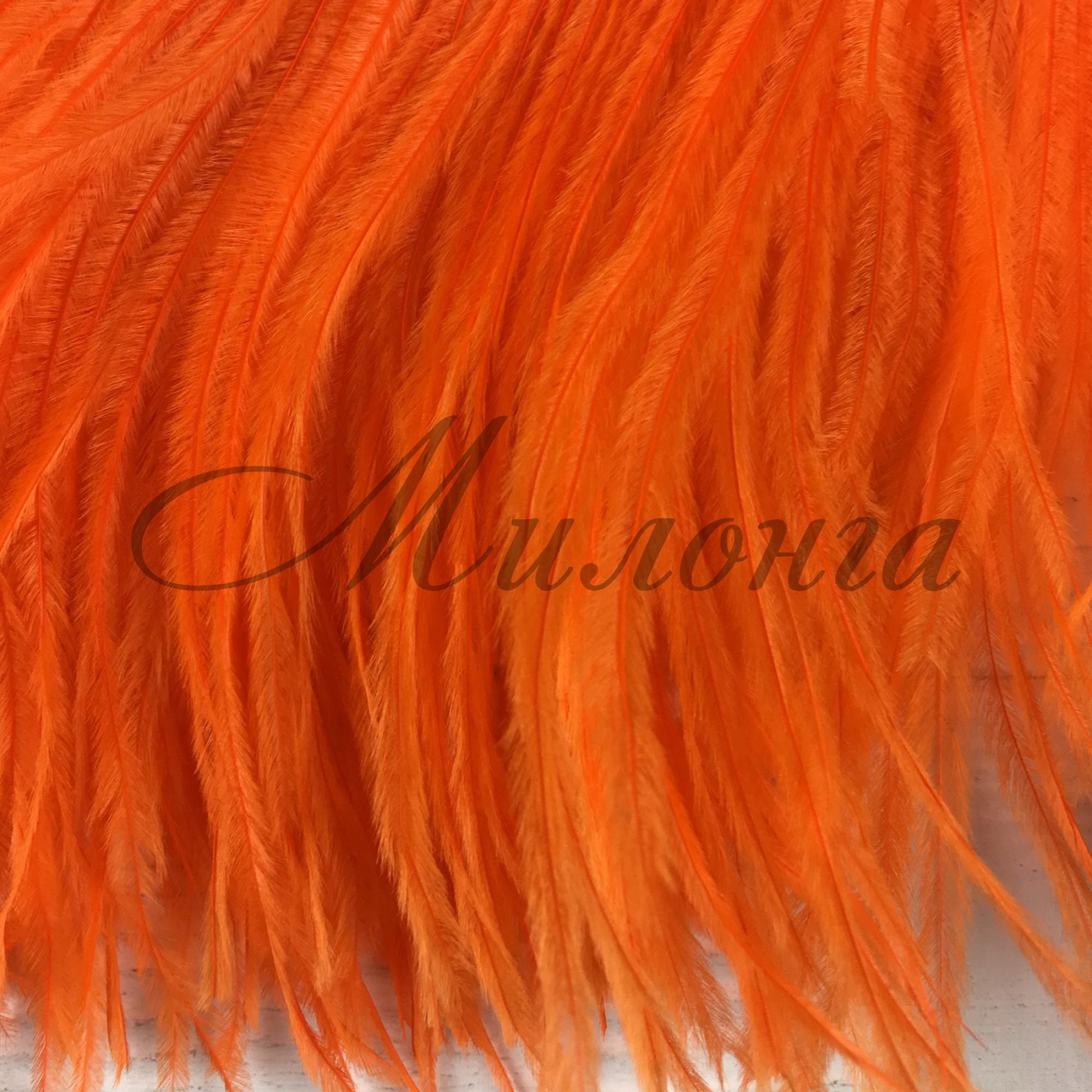 Перья страуса Chrisanne Orange